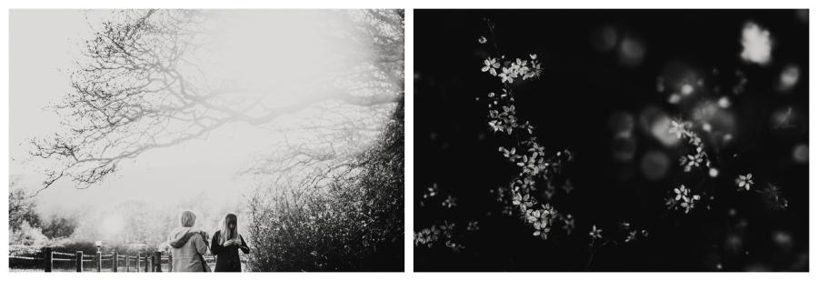 2016-12-27_0039.jpg